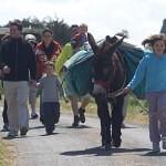 sur le chemin vers la grève du Vauglin